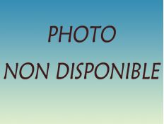 ROGNEUSE SERIE E 2DR 115