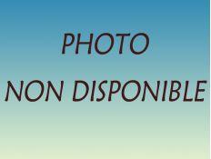 GYROBROYEUR 1.60 40CH EP 6MM