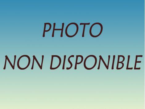 GYROBROYEUR 1.60 60CH EP 6MM